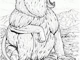 Coloring Baboon Animals Springbok sketch template