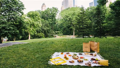 summer picnics a quick guide to the ultimate summer picnic the window