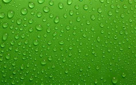 Background Green Images Wallpaper by Green Wallpapers Hd Pixelstalk Net