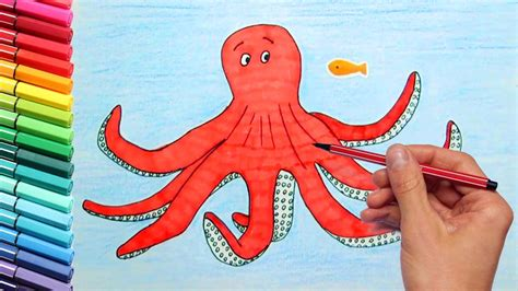 what color is an octopus how to draw an octopus for children dibujo animales infantiles