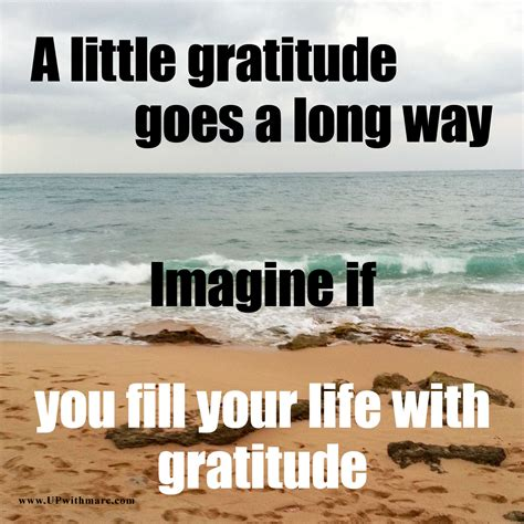 Gratitude Meme - life up with marc