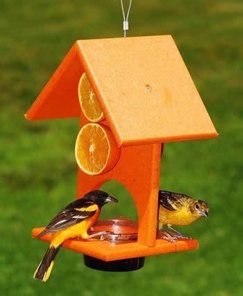 orange  jelly oriole feeder diy bird feeder bird