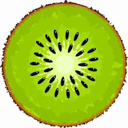 Kiwi Clipart Fruit Slice Clip Transparent Kiw