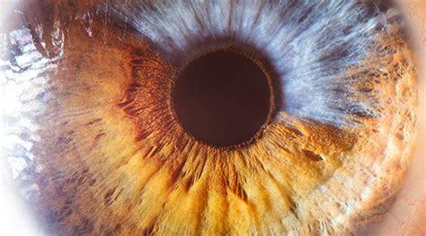 fascating extreme close ups   human eye spirit science