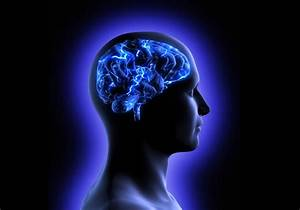 Why Intelligent People Are Less Likely to Be Reli ...
