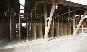 Podest Pferd Selber Bauen : komfortable residenzen pferdewoche online ~ Yasmunasinghe.com Haus und Dekorationen