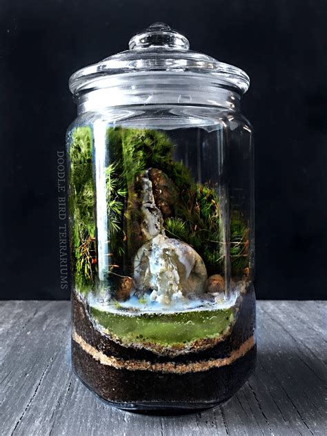 moss in glass jar waterfall terrarium with live moss plants in hex glass jar from doodlebirdie on etsy studio