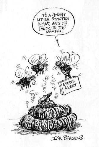 Flies! By Ian Baker | Media & Culture Cartoon | TOONPOOL