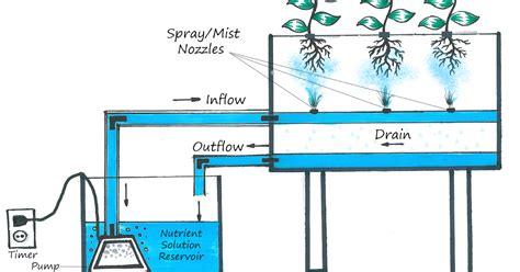 Deep Water Culture/dwc Diy Creations
