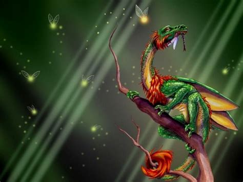 dragons images green dragon hd wallpaper  background