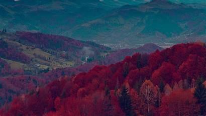 Dark Nature Mountain Fall Tree Fun 2160