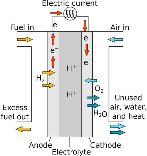 Proton Exchange Membrane Fuel Cell proton exchange membrane fuel cell