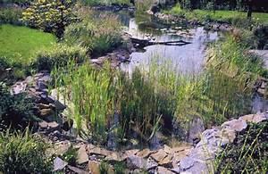 Kleiner Gartenteich Anlegen : naturteich anlegen gartenteich anlegen kosten gartenteich ~ Michelbontemps.com Haus und Dekorationen