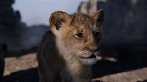 lion kings  full length trailer drops video cnet