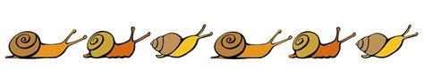 cuisiner les escargots de bourgogne escargot de bourgogne à soissons