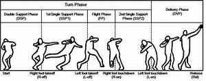 Defined Motion Phases Of Rotational Shot Put Technique