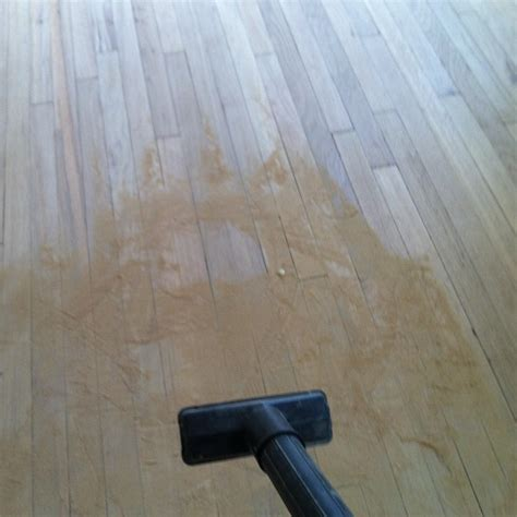 how to clean dusty wood floors four reasons i m refinishing my hardwood floors first