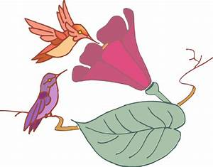 Hummingbirds And A Flower Clip Art at Clker.com - vector ...