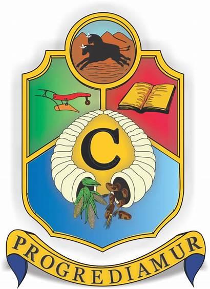 Agriculture College Cedara Africa South Pietermaritzburg Za