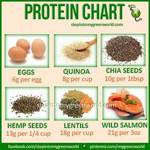 Do You Know Which Foods Contain Good Amounts Of Proteins