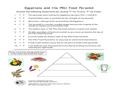 Worksheet Food Pyramid Worksheets Worksheet Fun