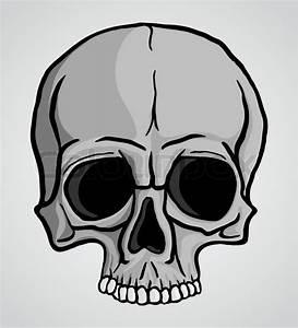 Human Skull Over Gray Background