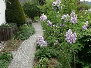 Gartenwege Aus Kies : einen gartenweg als individuellen blickfang anlegen ~ Sanjose-hotels-ca.com Haus und Dekorationen
