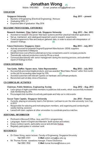What Goes On Your Resume what goes into a resume tips search