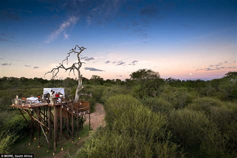 A South African Home That Maximizes Nature Reserve Views : Safari Under The Stars At South Africa's Lion Sands Game