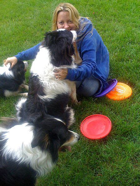 11 Things That You Have To Endure Of Your Border Collies