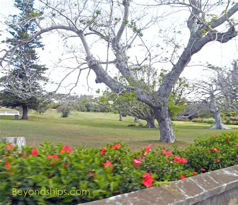 bermuda botanical gardens following lennon in bermuda talking with the captain