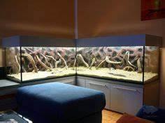 L Form Aquarium : aquarium in home on pinterest aquarium design aquarium and aquascaping ~ Sanjose-hotels-ca.com Haus und Dekorationen