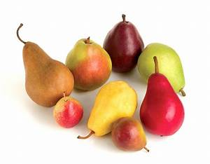 Differences in Pear Varieties | Stemilt  Pear