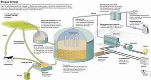 Integration Berechnen : biogasanlage funktion durchl uft vier phasen ~ Themetempest.com Abrechnung