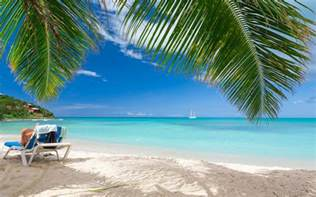 summer tropical sea nature landscape caribbean palm trees sand vacations