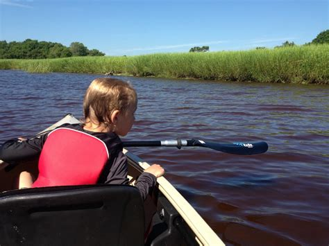 Side Of Boat Sheltered From Wind by Topsail Kayak Sup Tours Paddle Nc