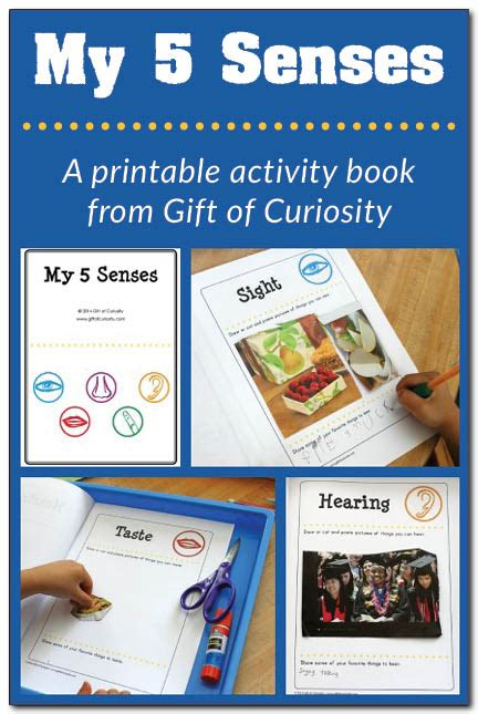 free five senses printables and activities free 659 | cap128