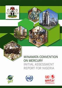(PDF) MINAMATA CONVENTION ON MERCURY INITIAL ASSESSMENT ...