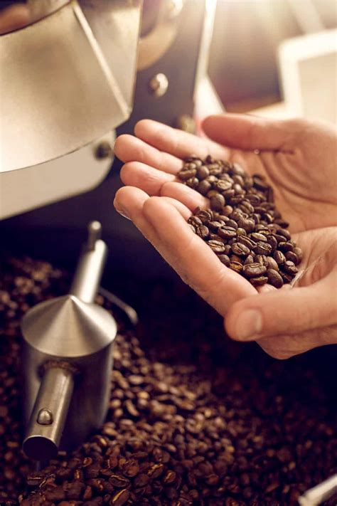 Find out how to store them correctly for ultimate freshness in every cup. 11 Tips to Store Coffee Beans