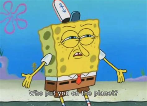 Funny Spongebob Squarepants Face Pictures