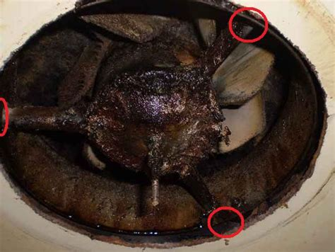 How To Clean Kitchen Exhaust Fan Cover by Removing Cleaning Kitchen Exhaust Fan Doityourself