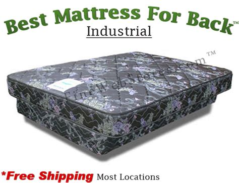 best mattress for back olympic industrial best mattress for back
