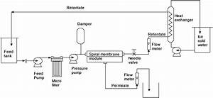 Simple Extraction And Membrane Purification Process In