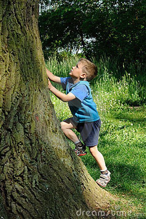 child climbing tree stock  image