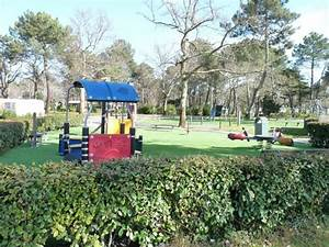 camping bassin d39arcachon animations du camping en juillet With camping arcachon avec piscine couverte 11 emplacements camping bassin darcachon camping fontaine