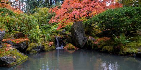 fall color update october   portland japanese garden