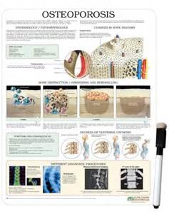 Osteoporosis Patient Education Handouts