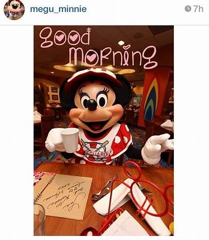 Disney Movies Tokyo Minnie Disneyland