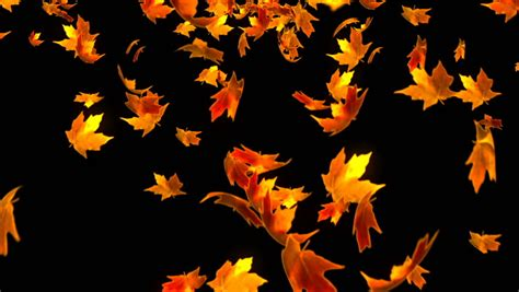 Fall Backgrounds Realistic by Flying Colorful Maple Leaves Autumn Fall Background