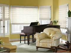 The Best Window Blinds For Living Room Decorate Rx Blindstogo Living Room 1 Rx Blindstogo Living Room 1